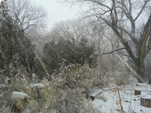 snow1.14.2013