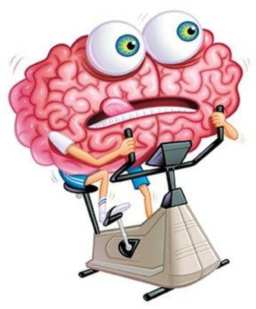 brain treadmill